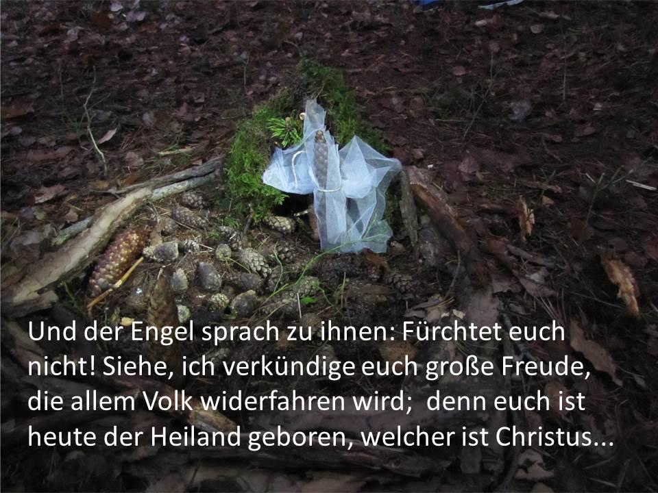 Waldkids Weihnachtsgeschichte